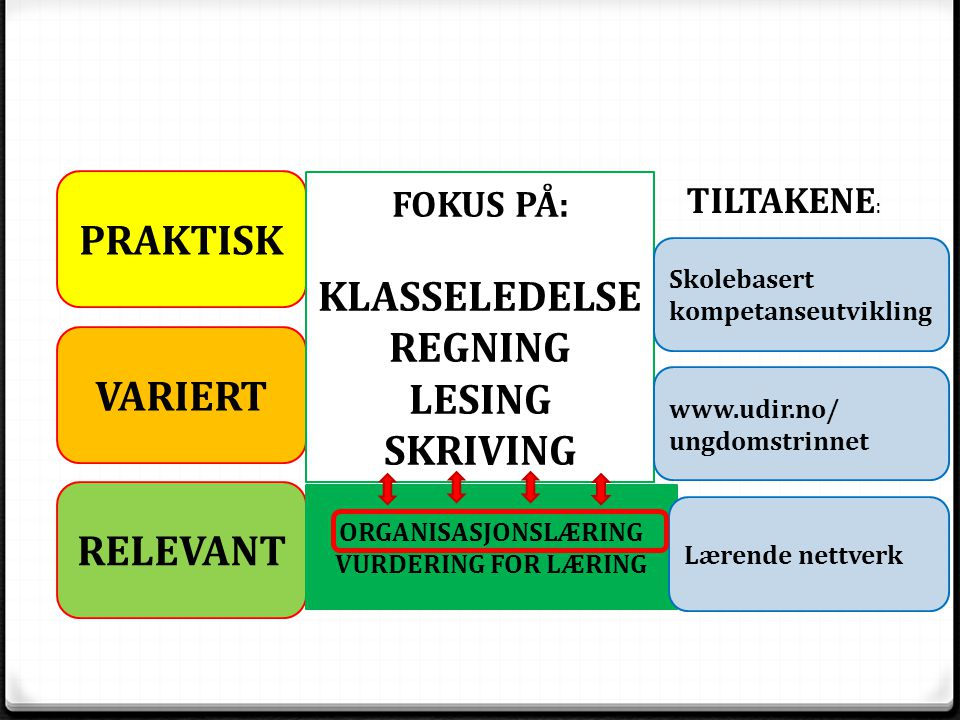 PRAKTISK KLASSELEDELSE REGNING LESING SKRIVING VARIERT RELEVANT
