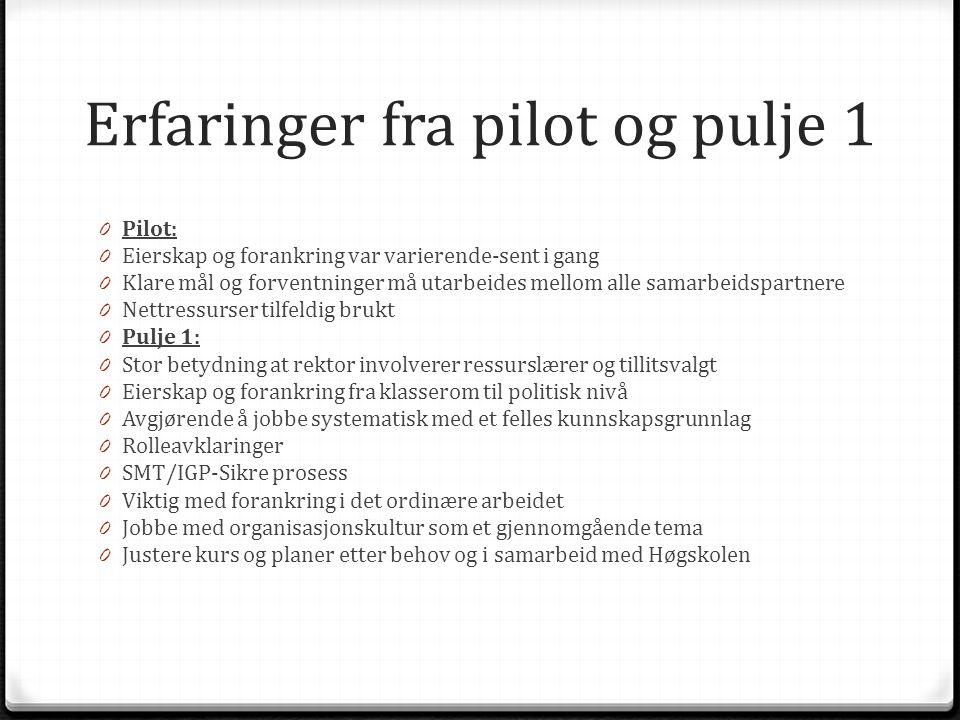 Erfaringer fra pilot og pulje 1