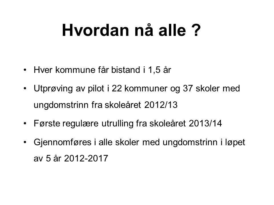 Hvordan nå alle Hver kommune får bistand i 1,5 år