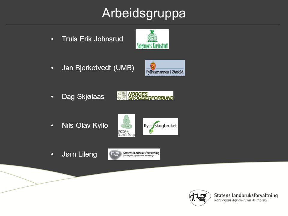 Arbeidsgruppa Truls Erik Johnsrud Jan Bjerketvedt (UMB) Dag Skjølaas