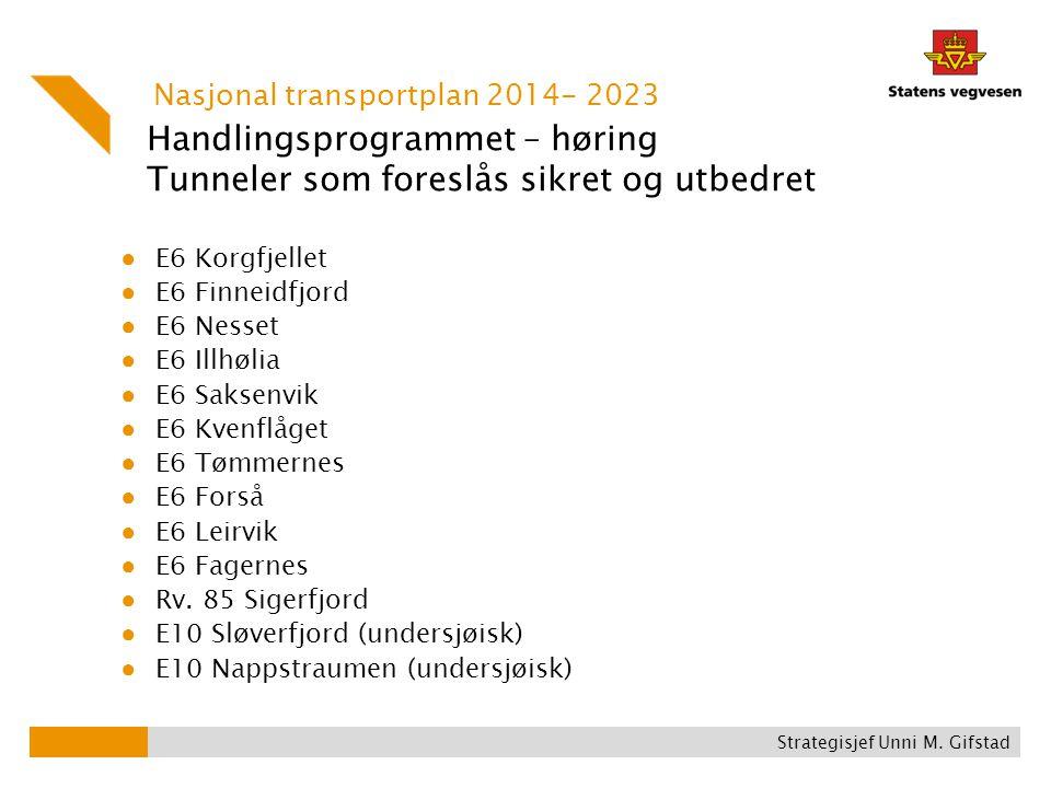 Handlingsprogrammet – høring Tunneler som foreslås sikret og utbedret