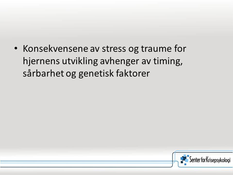 Konsekvensene av stress og traume for hjernens utvikling avhenger av timing, sårbarhet og genetisk faktorer