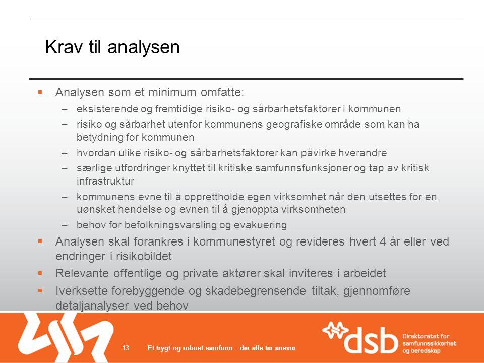 Krav til analysen Analysen som et minimum omfatte: