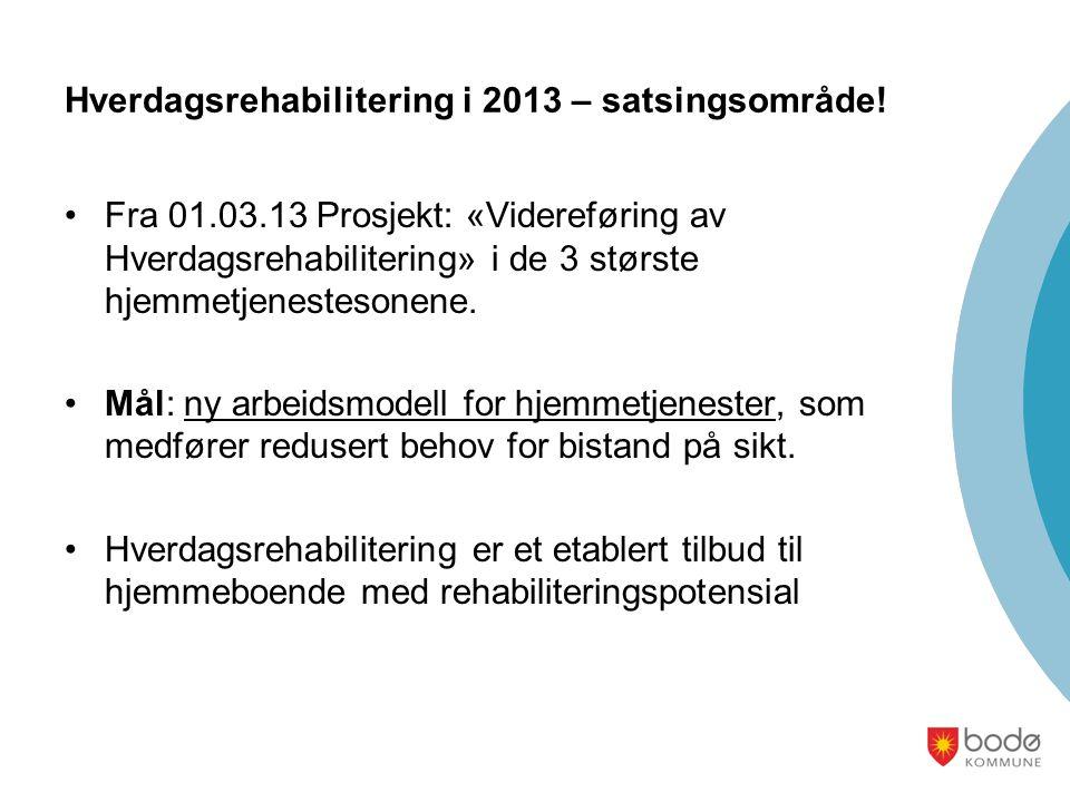 Hverdagsrehabilitering i 2013 – satsingsområde!