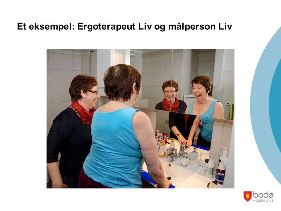 Et eksempel: Ergoterapeut Liv og målperson Liv