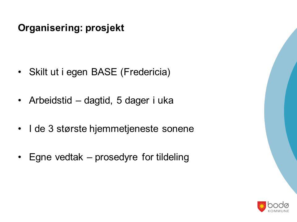 Organisering: prosjekt