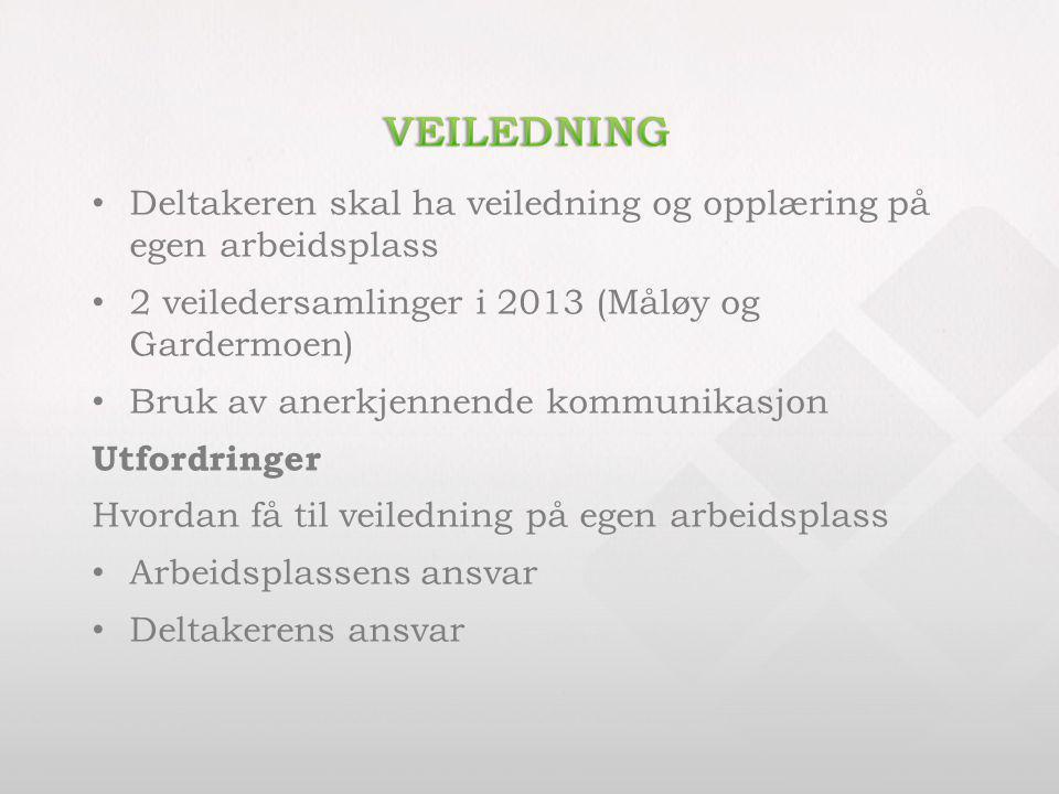 Veiledning Deltakeren skal ha veiledning og opplæring på egen arbeidsplass. 2 veiledersamlinger i 2013 (Måløy og Gardermoen)