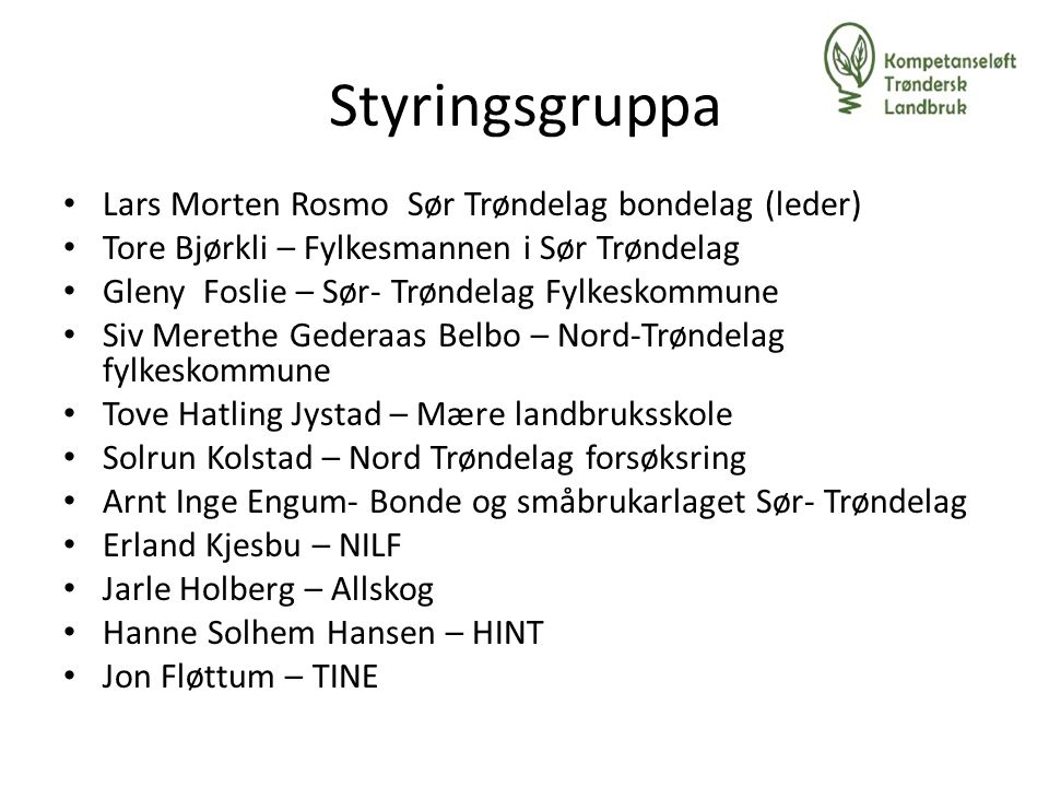 Styringsgruppa Lars Morten Rosmo Sør Trøndelag bondelag (leder)