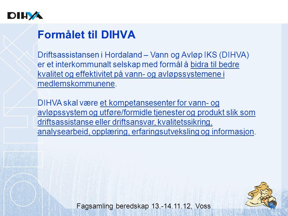 Formålet til DIHVA