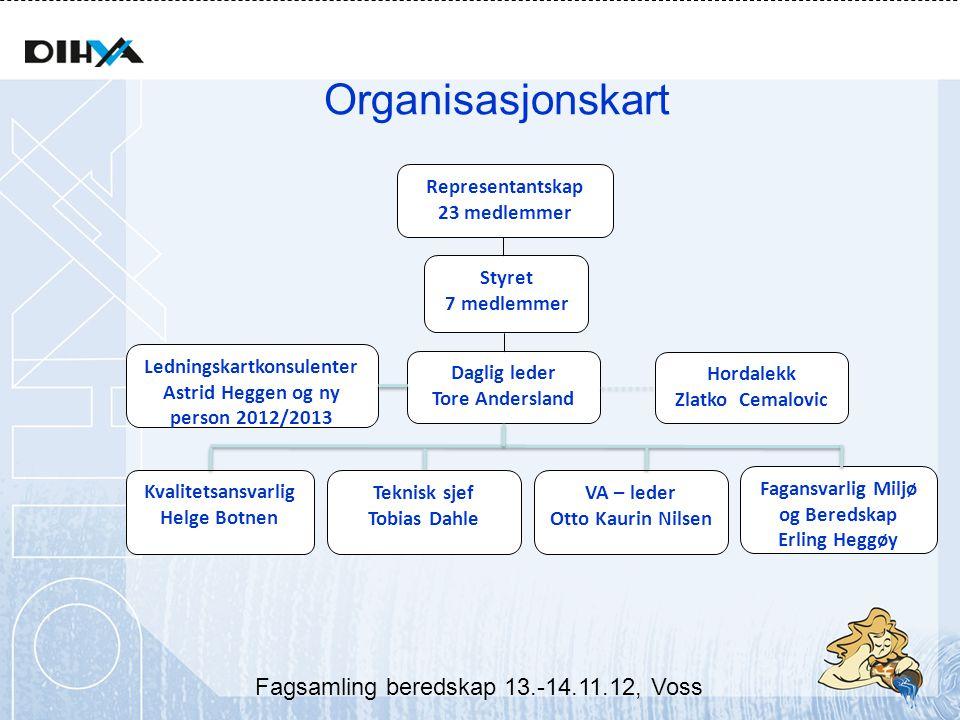 Ledningskartkonsulenter Astrid Heggen og ny person 2012/2013