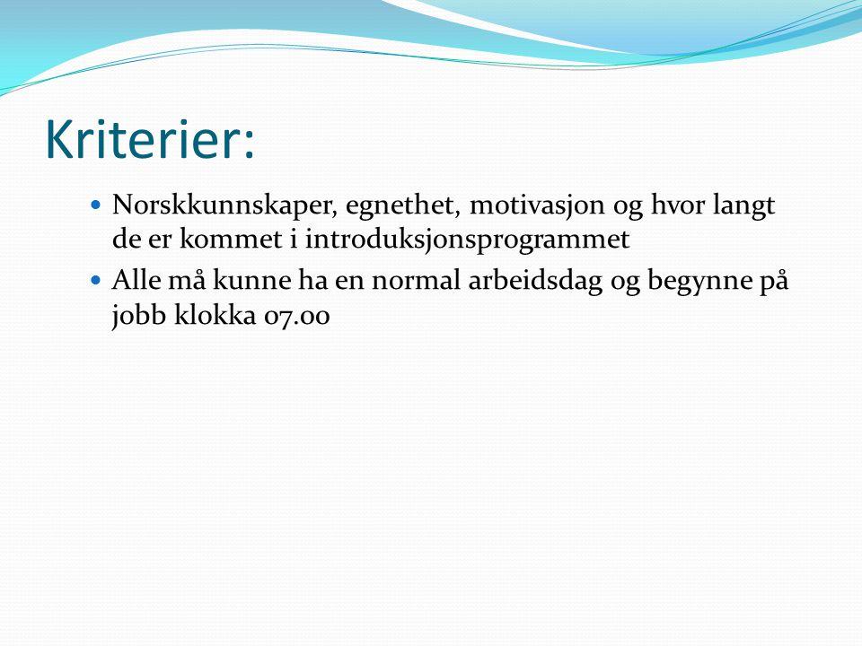 Kriterier: Norskkunnskaper, egnethet, motivasjon og hvor langt de er kommet i introduksjonsprogrammet.
