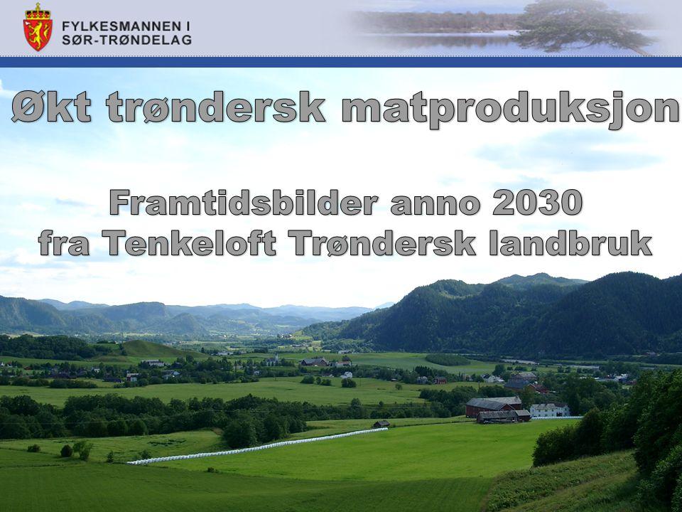 Økt trøndersk matproduksjon fra Tenkeloft Trøndersk landbruk