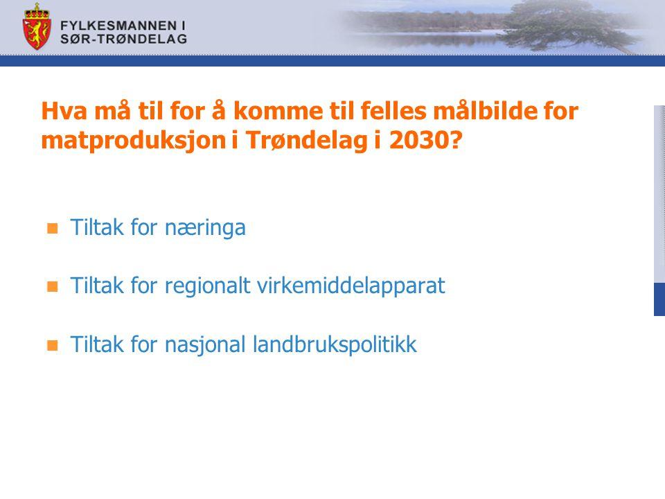 Hva må til for å komme til felles målbilde for matproduksjon i Trøndelag i 2030