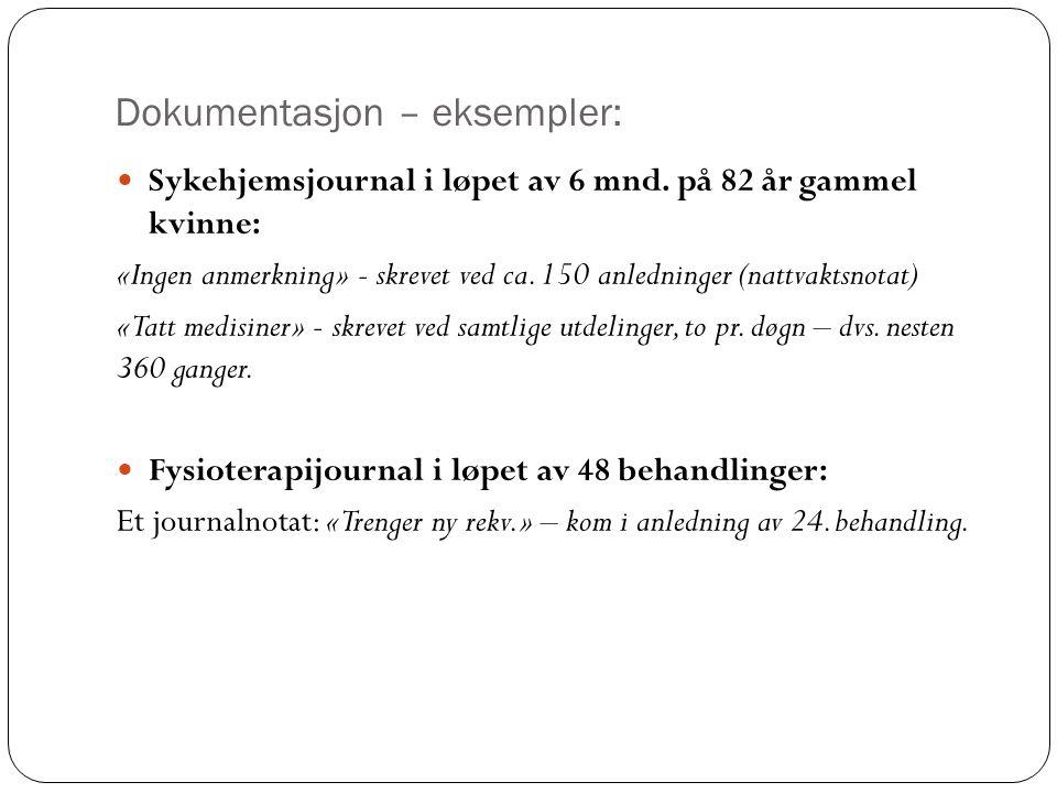 Dokumentasjon – eksempler: