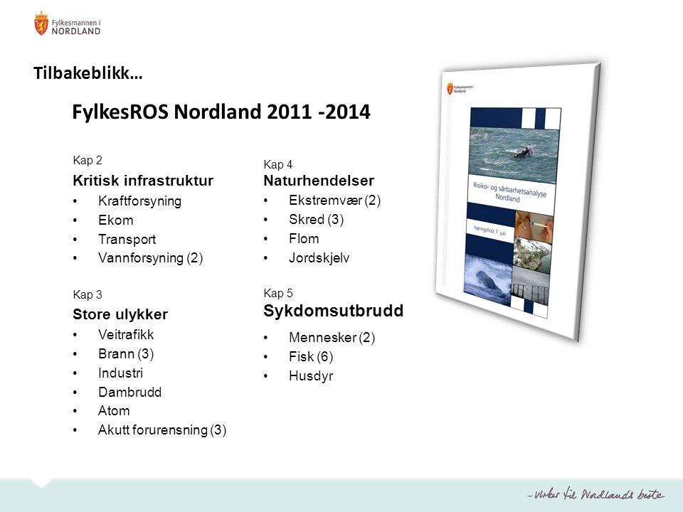 Tilbakeblikk… FylkesROS Nordland 2011 -2014 Sykdomsutbrudd