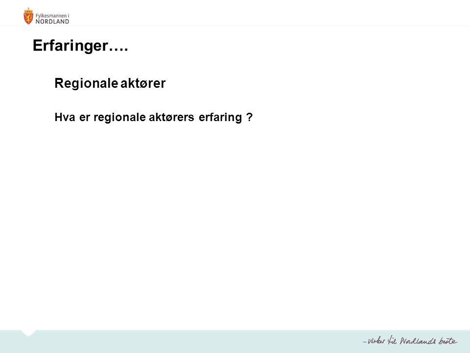 Erfaringer…. Regionale aktører Hva er regionale aktørers erfaring