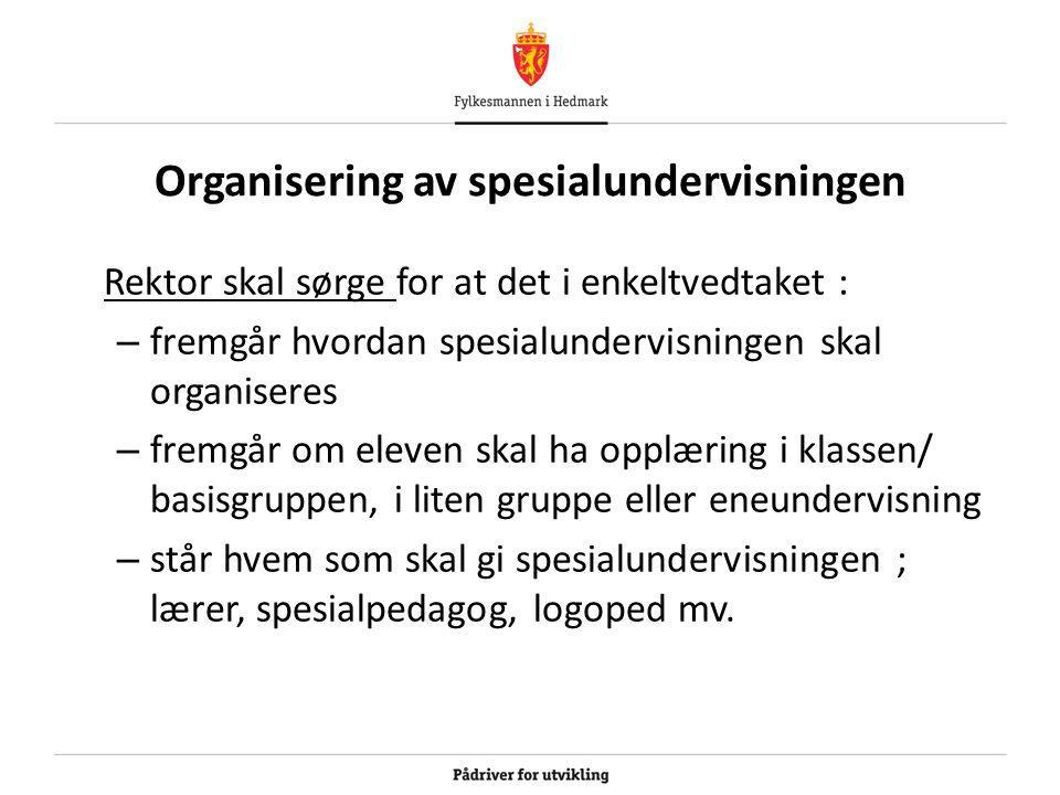Organisering av spesialundervisningen