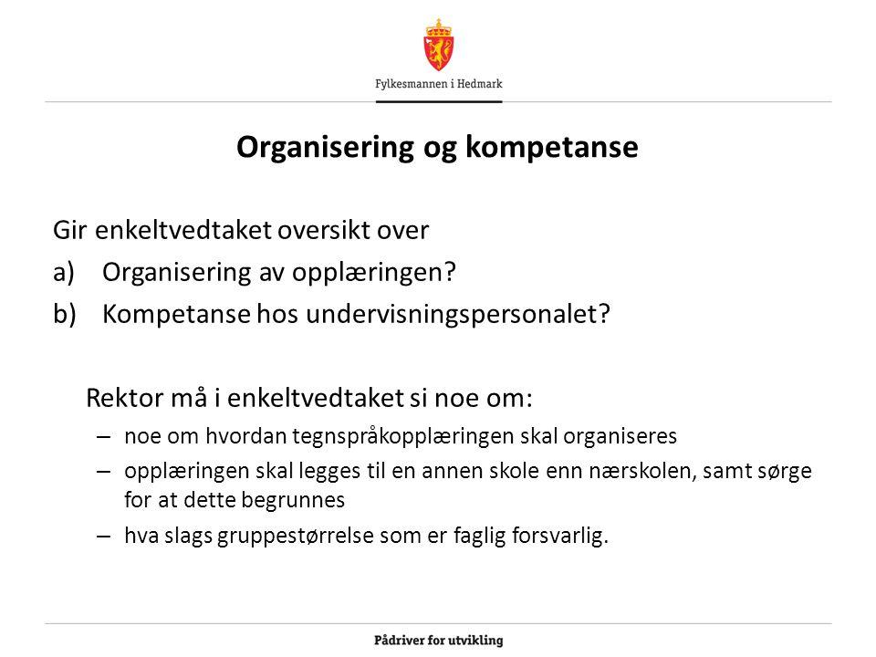 Organisering og kompetanse