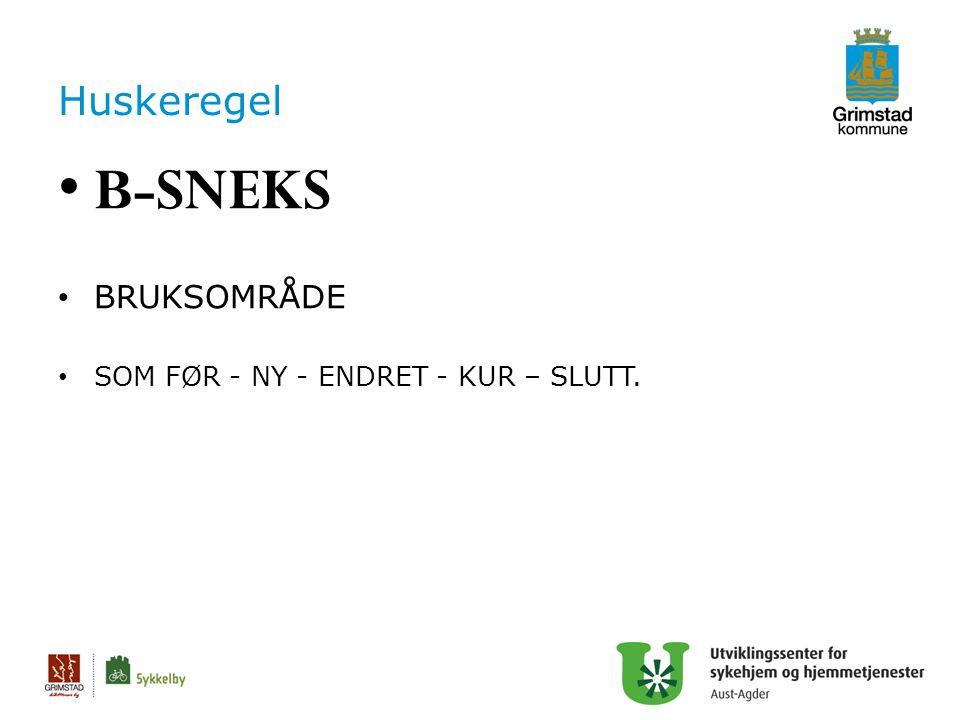 Huskeregel B-SNEKS BRUKSOMRÅDE SOM FØR - NY - ENDRET - KUR – SLUTT.