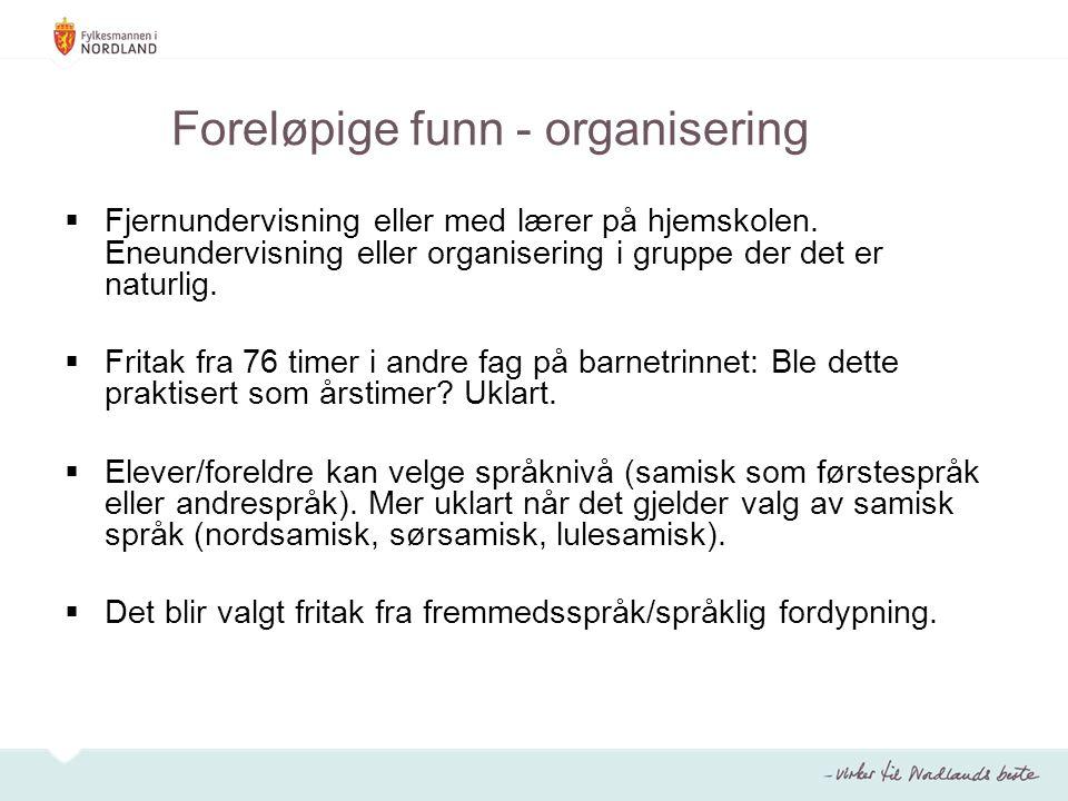 Foreløpige funn - organisering