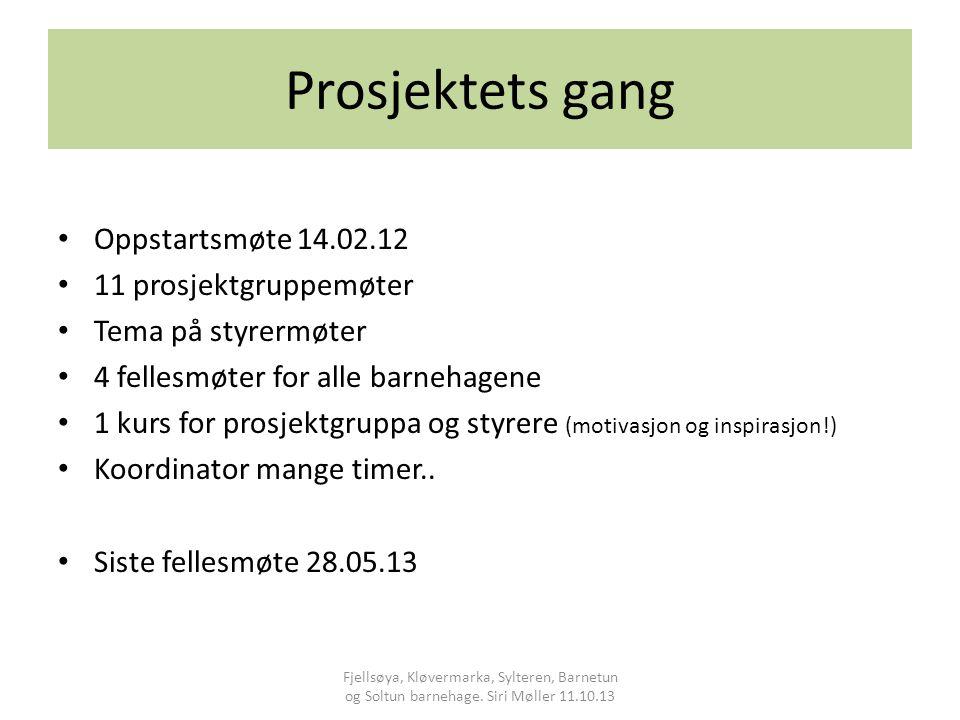 Prosjektets gang Oppstartsmøte 14.02.12 11 prosjektgruppemøter