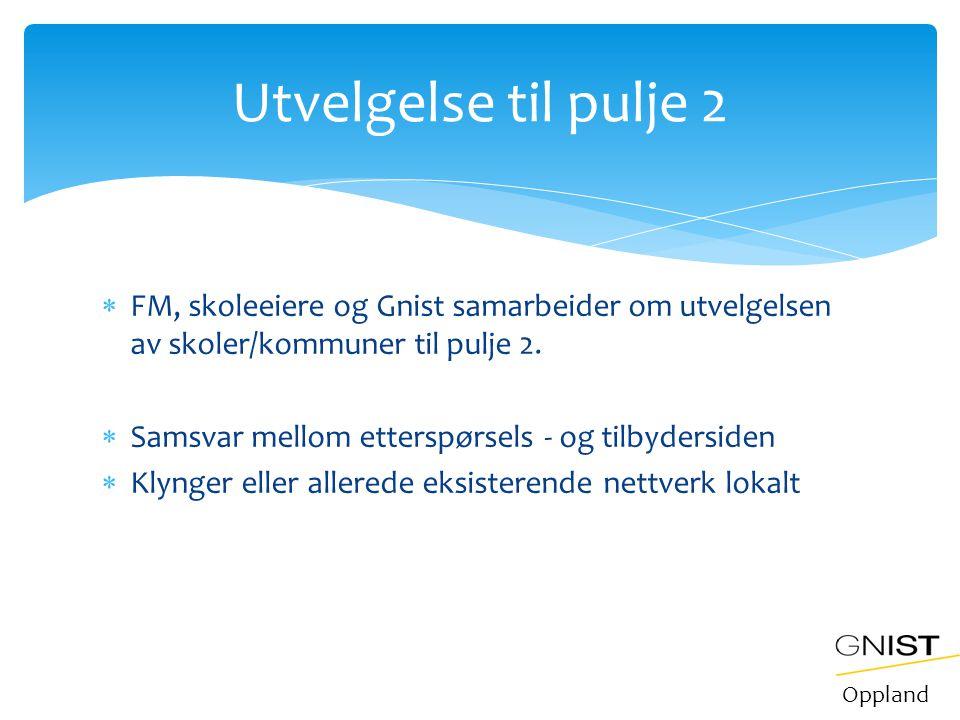 Utvelgelse til pulje 2 FM, skoleeiere og Gnist samarbeider om utvelgelsen av skoler/kommuner til pulje 2.