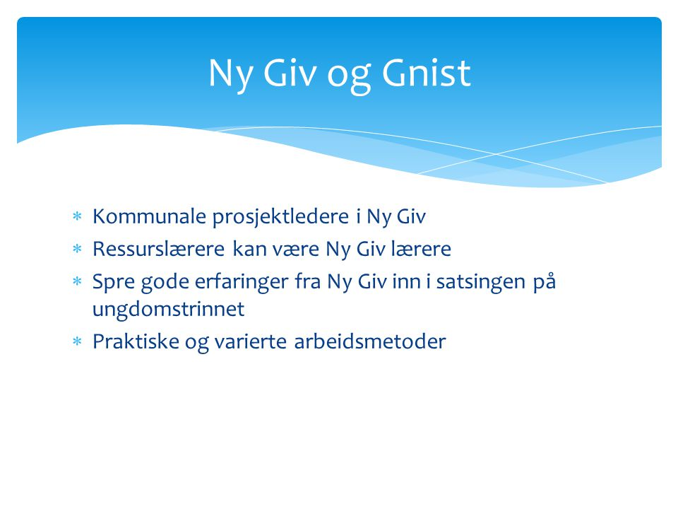 Ny Giv og Gnist Kommunale prosjektledere i Ny Giv