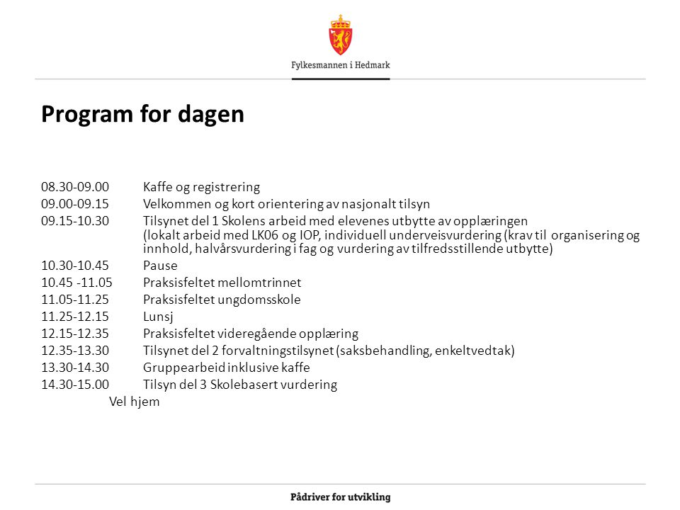 Program for dagen