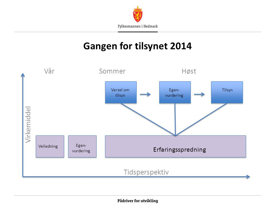 Gangen for tilsynet 2014 Vår Sommer Høst Virkemiddel Tidsperspektiv