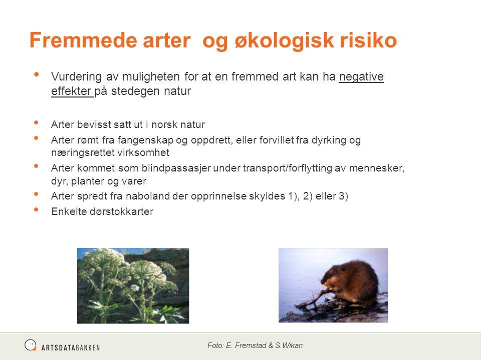 Fremmede arter og økologisk risiko