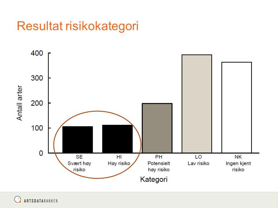 Resultat risikokategori