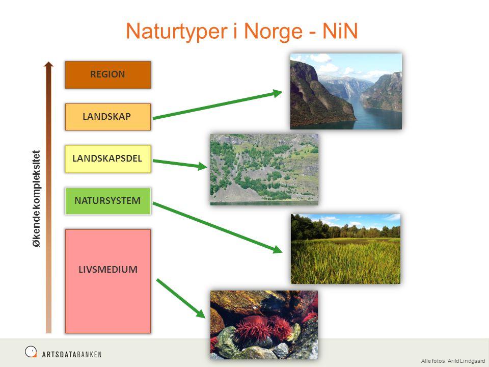Naturtyper i Norge - NiN