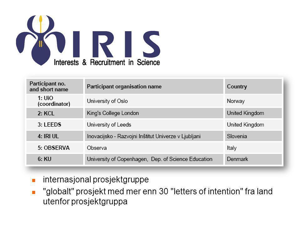 internasjonal prosjektgruppe