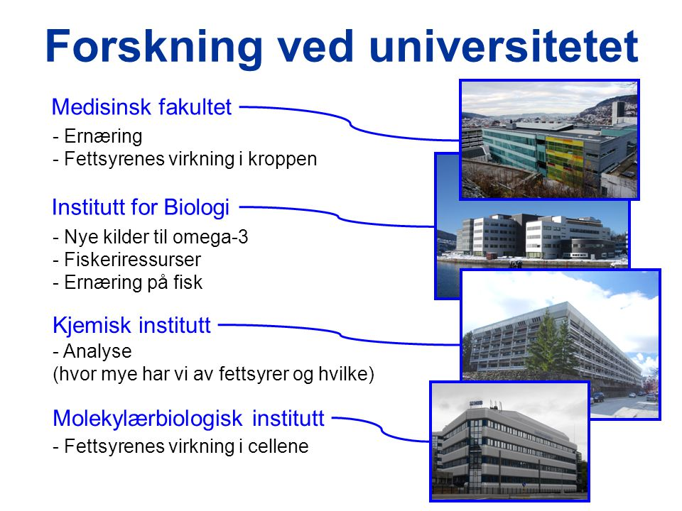 Forskning ved universitetet