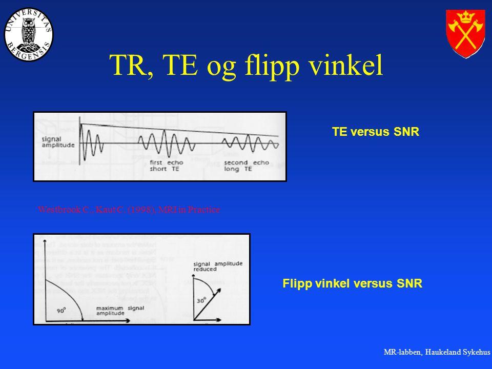 TR, TE og flipp vinkel TE versus SNR Flipp vinkel versus SNR