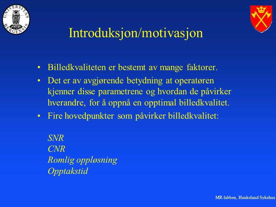 Introduksjon/motivasjon