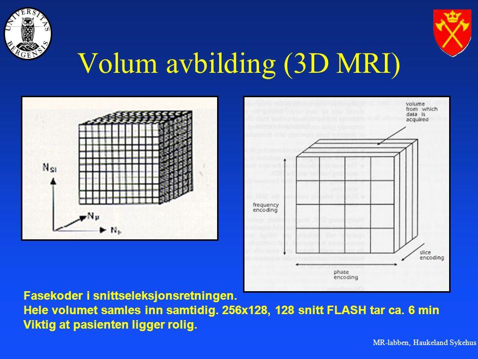 Volum avbilding (3D MRI)