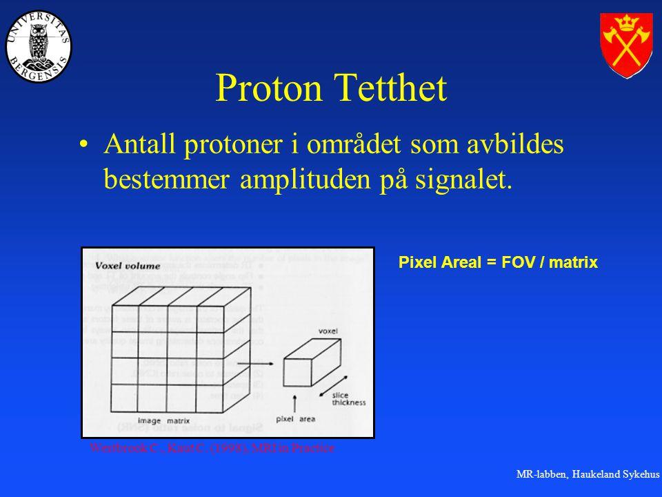 Proton Tetthet Antall protoner i området som avbildes bestemmer amplituden på signalet. Pixel Areal = FOV / matrix.