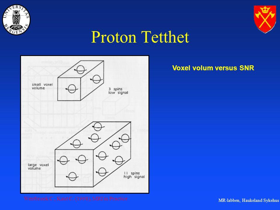 Proton Tetthet Voxel volum versus SNR