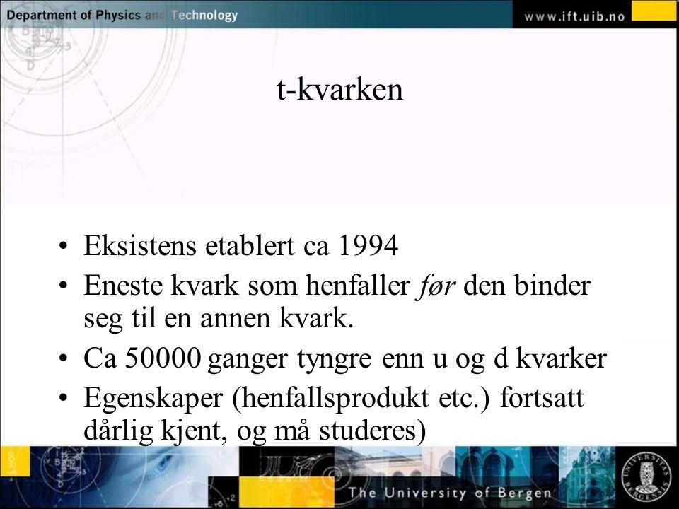 t-kvarken Eksistens etablert ca 1994