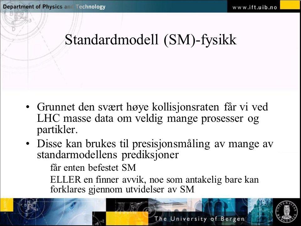 Standardmodell (SM)-fysikk