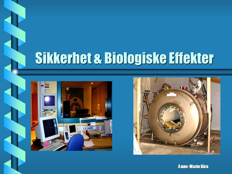 Sikkerhet & Biologiske Effekter