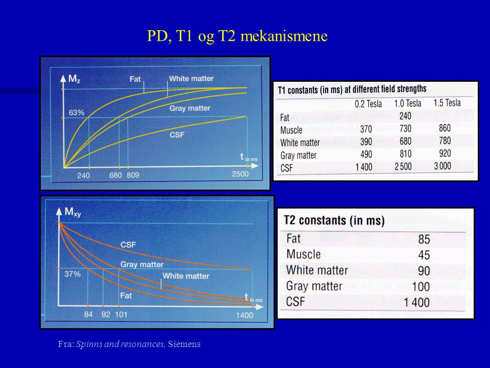 PD, T1 og T2 mekanismene Fra: Spinns and resonances, Siemens