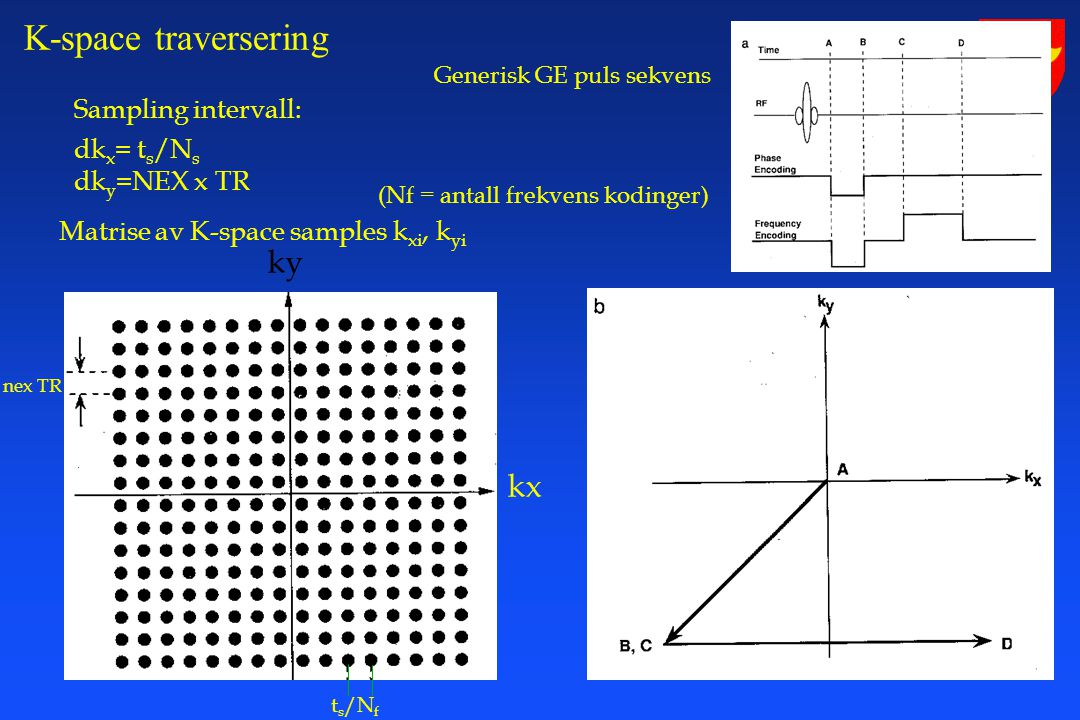 K-space traversering ky kx Sampling intervall: dkx= ts/Ns dky=NEX x TR