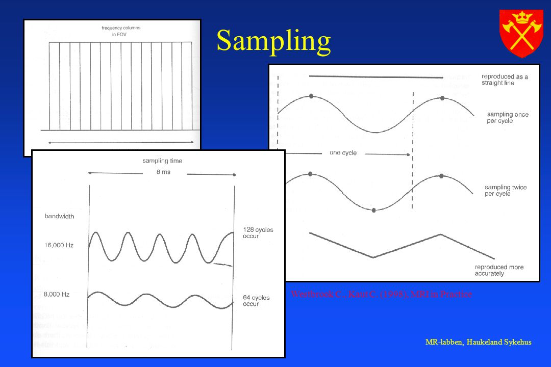 Sampling Westbrook C., Kaut C. (1998), MRI in Practice