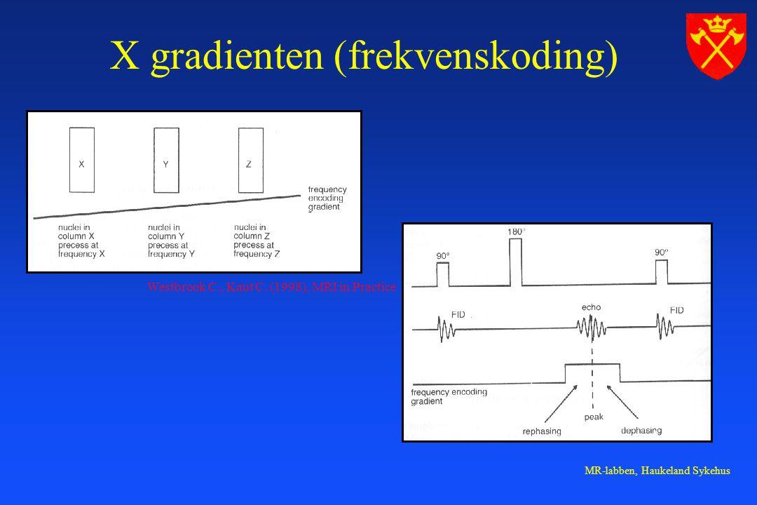 X gradienten (frekvenskoding)