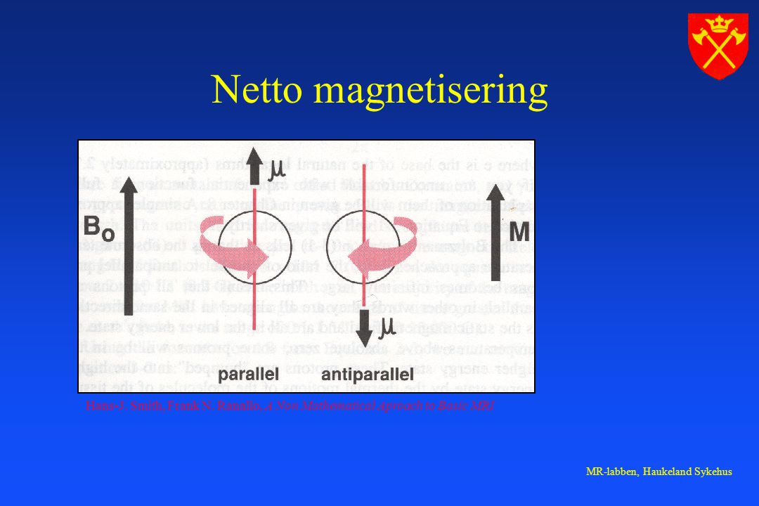 Netto magnetisering Hans-J. Smith, Frank N. Ranallo, A Non Mathematical Aproach to Basic MRI