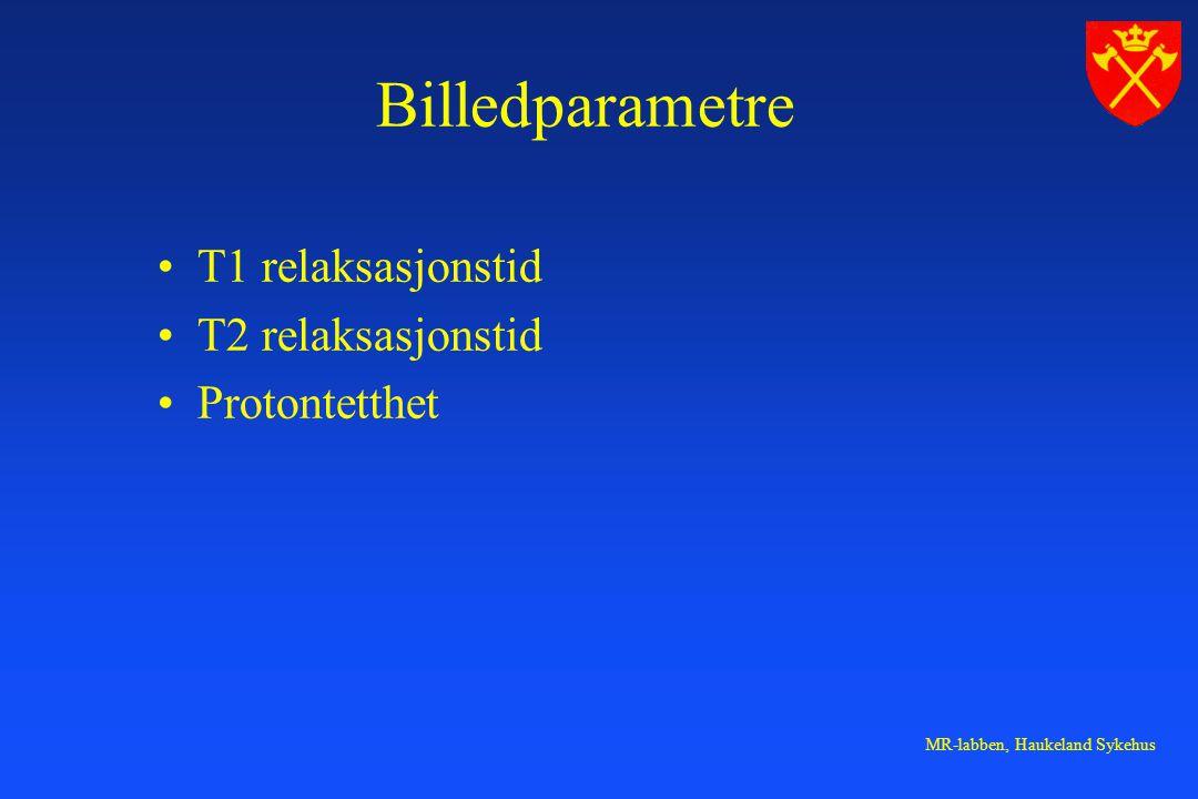 Billedparametre T1 relaksasjonstid T2 relaksasjonstid Protontetthet