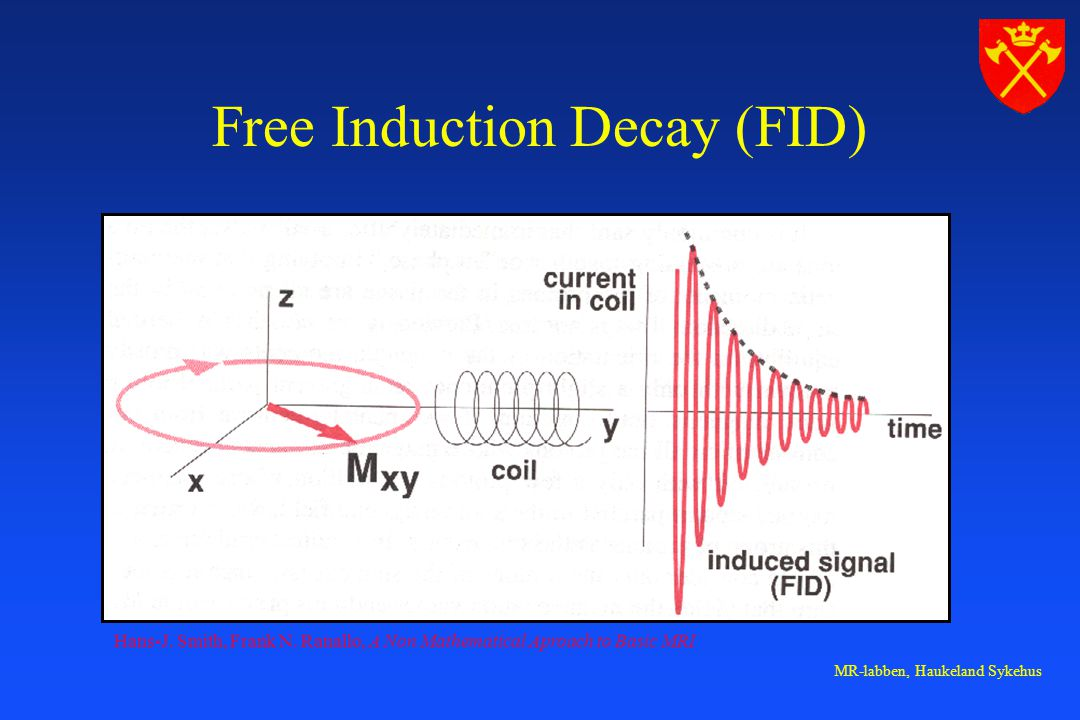 Free Induction Decay (FID)