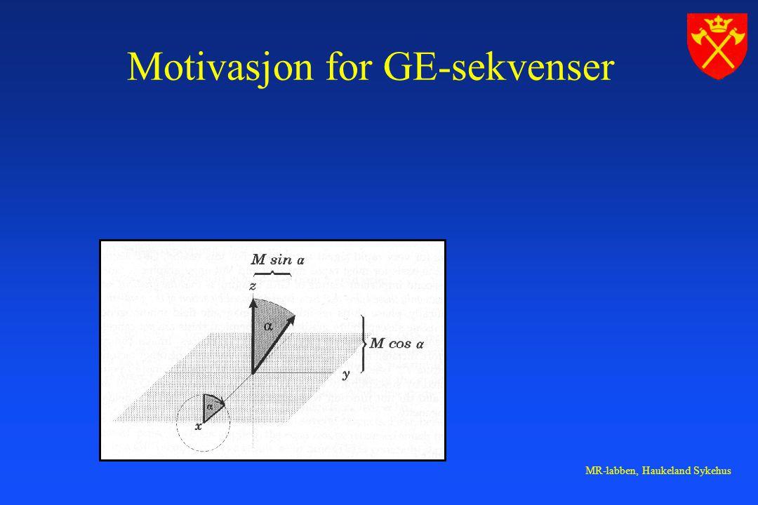 Motivasjon for GE-sekvenser